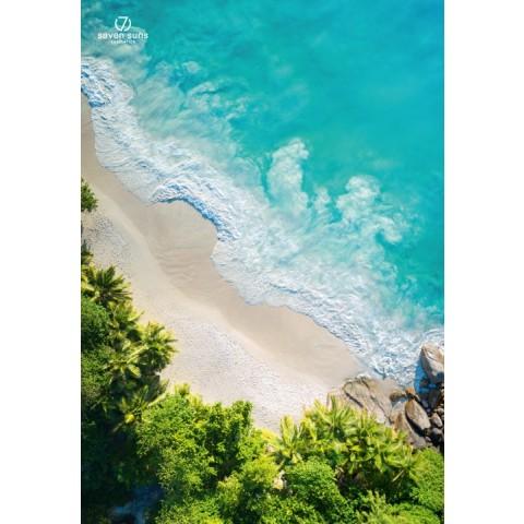 7suns Poster B1 Beach