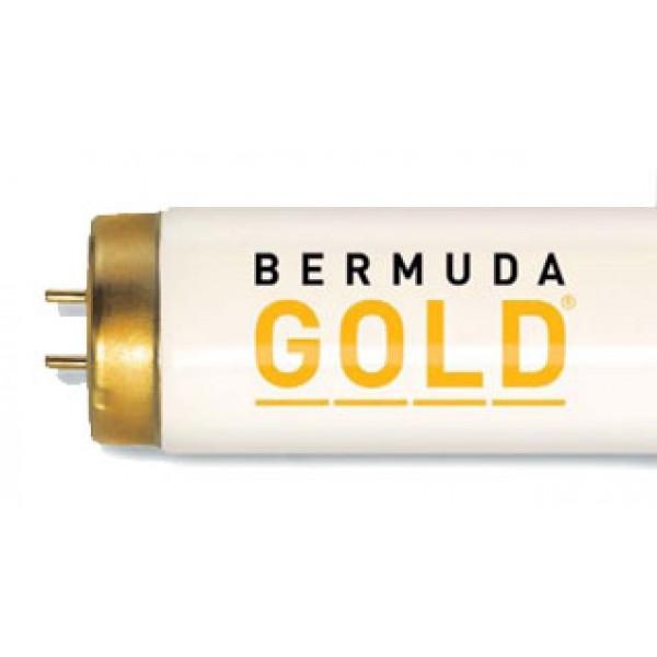 Bermuda Gold 800 33/160W Tanning lamp